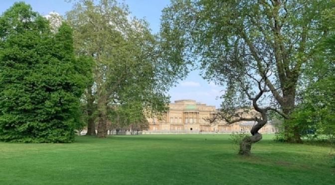 Бъкингамският дворец започна да продава кралски джин